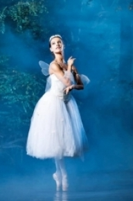 Catarina de Meneses and Ionut Dinita in Giselle